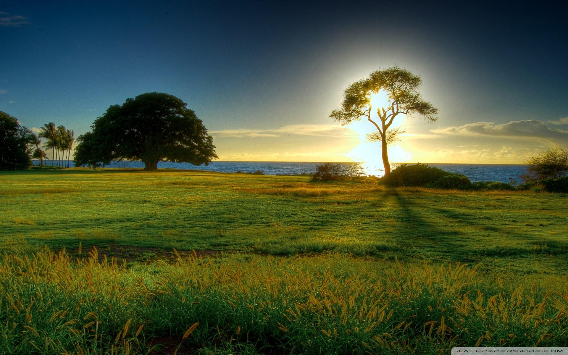 nature-landscape-wallpapers-desktop-138117